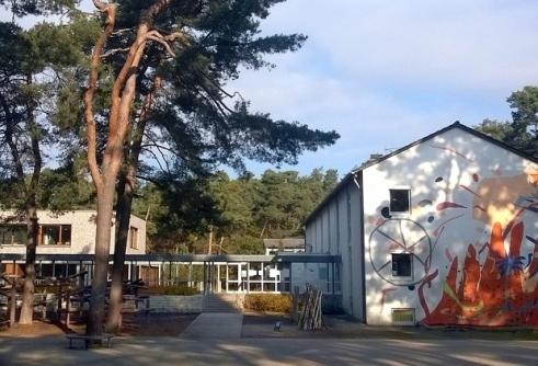 waldschule8